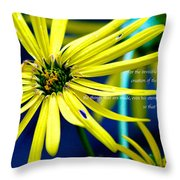 Clearly Seen Throw Pillow