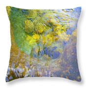 Clearly Spectacluar Throw Pillow