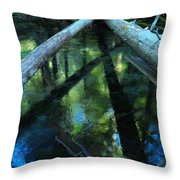 Clearwater Crossroads Throw Pillow