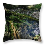 Clearwater Falls Series 17 Throw Pillow