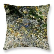 Clearwater Falls Series 5 Throw Pillow