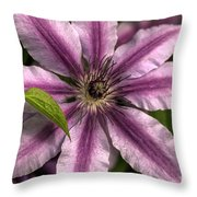 Clematis And Leaf Throw Pillow