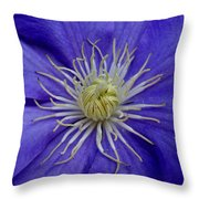 Clematis Beauty Throw Pillow