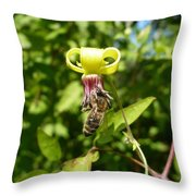Clematis Bee-auty Throw Pillow