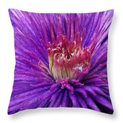 Clematis Blossom Upclose Throw Pillow