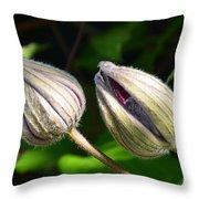 Clematis Buds Throw Pillow