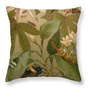Clematis Cicada And Beetles 1894 Throw Pillow
