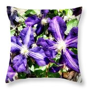 Clematis On A Stone Wall Throw Pillow
