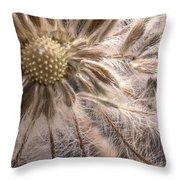 Clematis Seedpod Close Up Throw Pillow