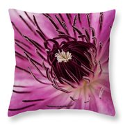Clematis Up Close Throw Pillow