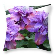 Clematis Vyvyan Pennell Throw Pillow