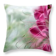 Cleome Meditation Love And Light Throw Pillow