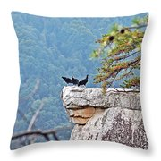 Cliff Hanging Throw Pillow
