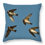Cliff Swallows Flying Throw Pillow