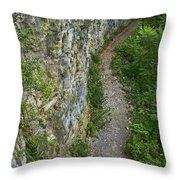 Cliffside Path Throw Pillow
