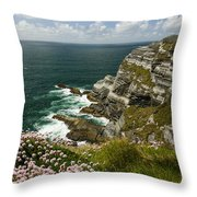 Cliffs Of Kerry Ireland Throw Pillow by Dick Wood
