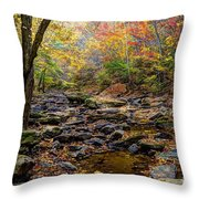 Clifty Creek In Hdr Throw Pillow by Paul Mashburn