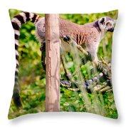 Climbing Lemur Throw Pillow
