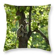 Climbing Lessons Throw Pillow