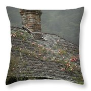 Climbing Roses Throw Pillow by Ron Sanford