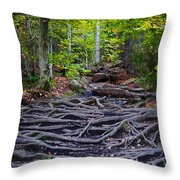 Climbing The Rocks And Roots Of Bald Mountain Throw Pillow