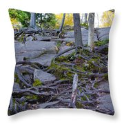 Climbing The Rocks Of Bald Mountain Throw Pillow