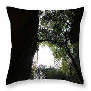 Climbing Up The Tree Throw Pillow