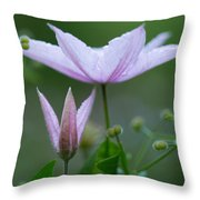 Climbing Upwards Throw Pillow