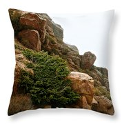 Cling Tight Throw Pillow