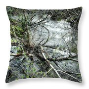 Clinging To Your Roots Throw Pillow