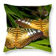 Clipper Butterflies Throw Pillow