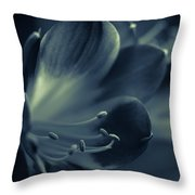 Clivia Miniata II Throw Pillow