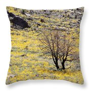 Cloaked In Yellow Throw Pillow