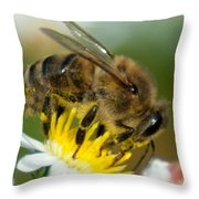 Close Encounter Of The Bee Kind Throw Pillow