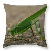 Close Encounter Of The Green Kind Throw Pillow