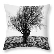 Close Tree In Snow Throw Pillow