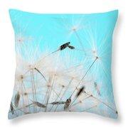Close-up Dandelion Seeds Against Blue Throw Pillow