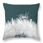 Close-up Dandelion Seeds, Prague, Czech Throw Pillow