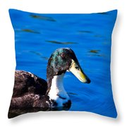 Close Up Duck Throw Pillow