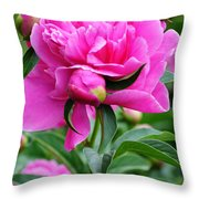 Close Up Flower Blooming Throw Pillow