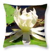 Close Up Throw Pillow