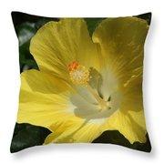 Close Up Of A Hibiscus...   # Throw Pillow