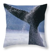Close Up Of A Humpback Whale Fluke In Throw Pillow