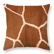 Close-up Of A Reticulated Giraffe Throw Pillow
