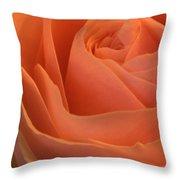 Close Up Of A Rose Bud Throw Pillow