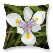 Close Up Of An Iris Throw Pillow