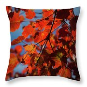 Close Up Of Bright Red Leaves With Blue Throw Pillow