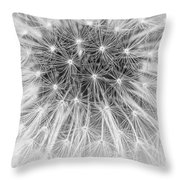 Close-up Of Dandelion Seeds Throw Pillow