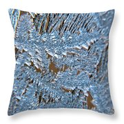 Close Up Of Frost Throw Pillow