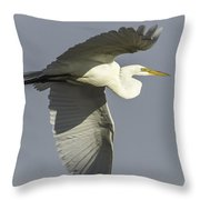 Close Up Of Great Egret In Flight Throw Pillow